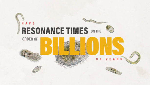 "Killam Program video - ""have resonance times on the order of billions of years"", various microorganisms"